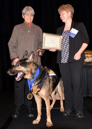 Professional Animal Award-3