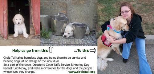 PuppiesNeedShelterMakeOverCircleTail